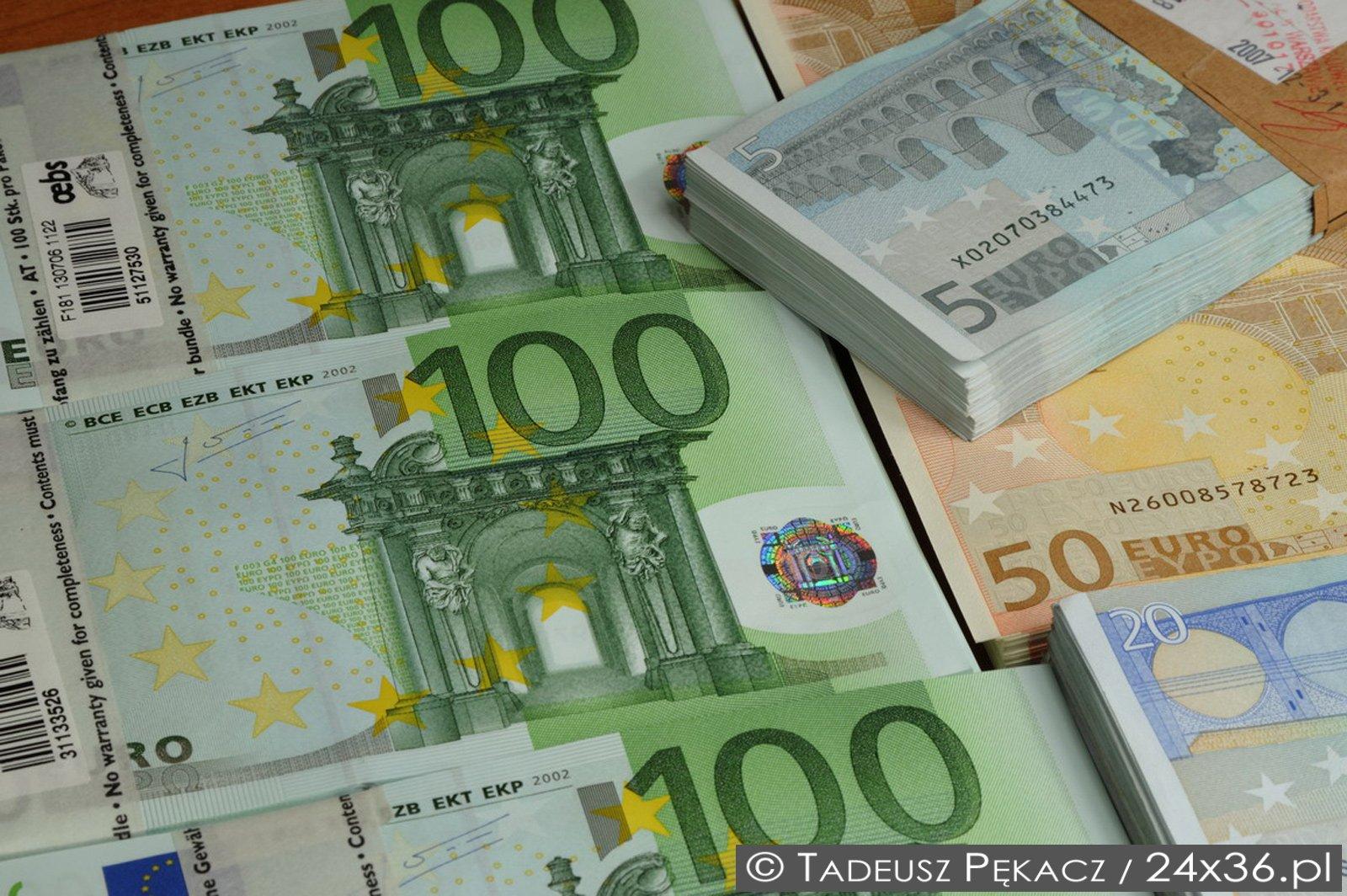 Dlaczego wejście Polski do strefy euro jest błędem