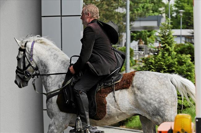Soska na koniu