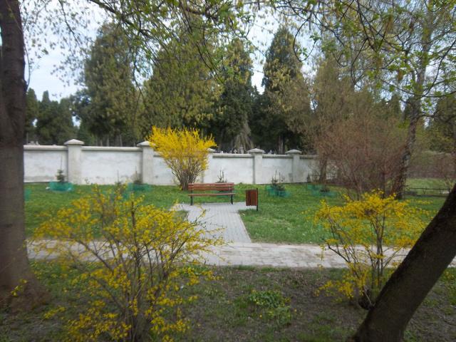 Skwer graniczy z murem cmentarnej nekropolii2