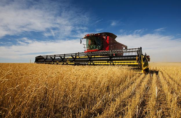 Szanse polskiego rolnictwa