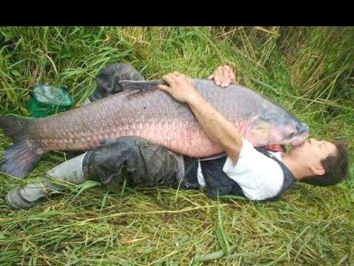 Baba na rybach (odc.1)