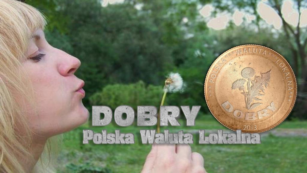 DobryPolskaWalutaLokalna