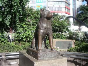hachiko-shibuya3