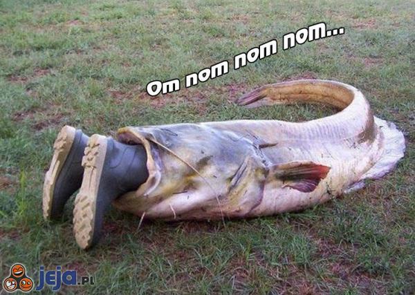 Baba na rybach i…małż(on)(odc. 12)