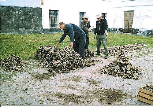 We Włodzimierzu Wołyńskim odnaleziono szczątki Polaków