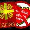 Nie popieram WOŚP foto: Blog Narodowego Katola