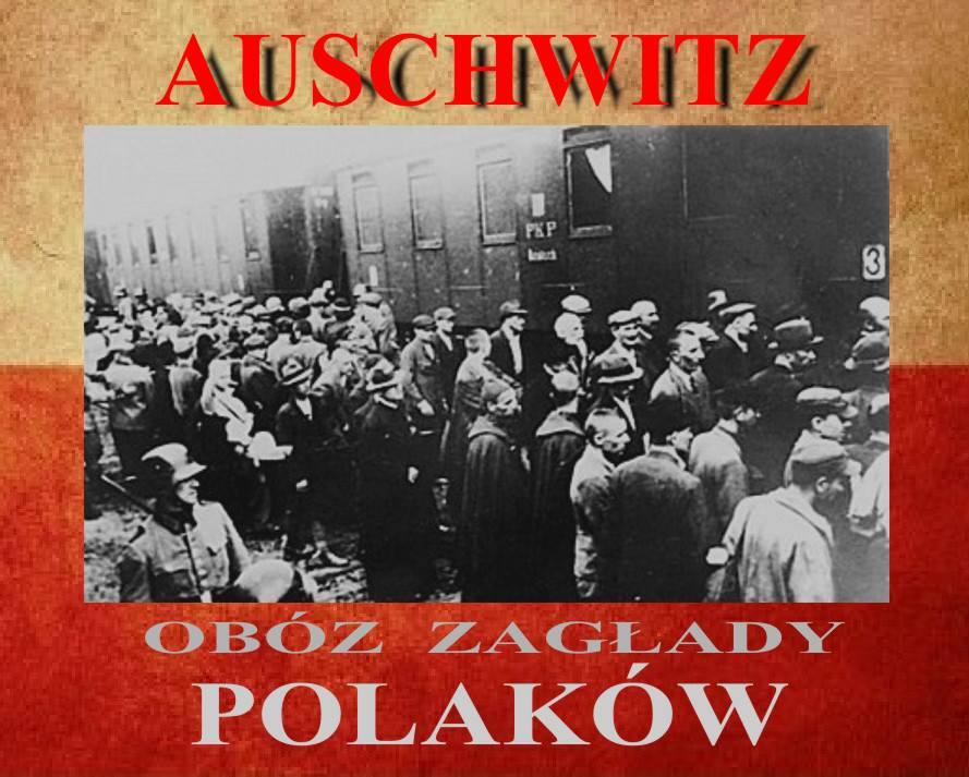 auschwitz zniszczyć Polaków