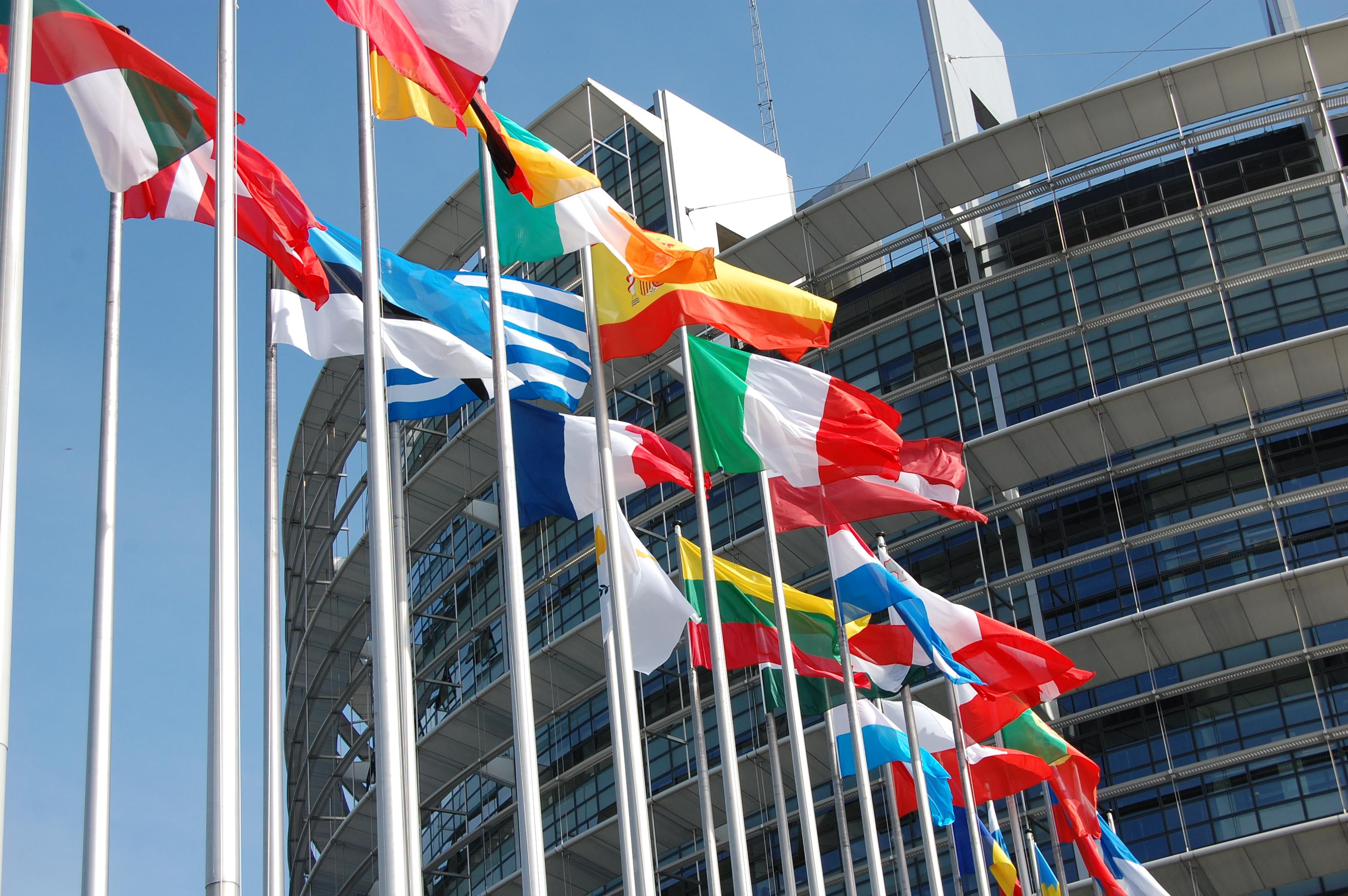 O wyborach do PE z perspektywy wolnorynkowej