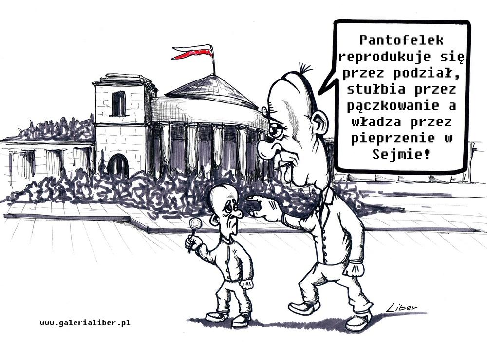 Sejm, czy lupanar?