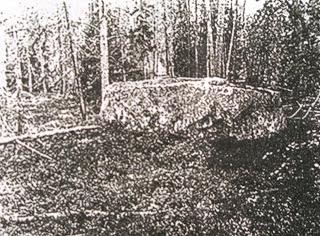 Dziwne artefakty, czy skamieliny powstają miliony lat?