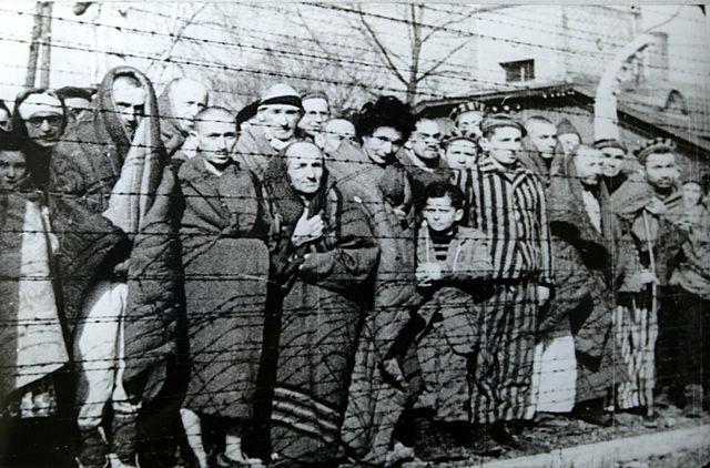 640px-Auschwitz_Liberated_January_1945