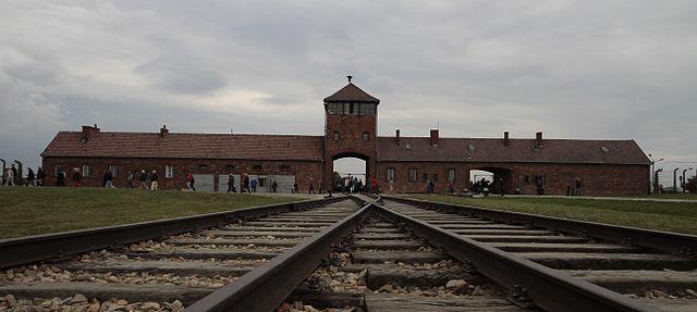 Efingerki z Birkenau