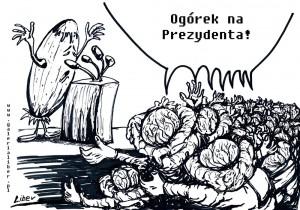 Kapuściane_łby_1