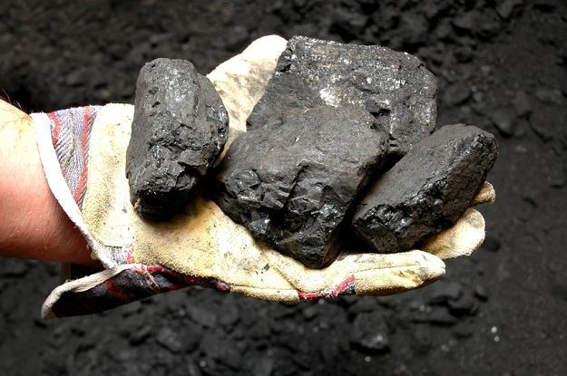 Dziel i rządź na przykładzie polskiego górnictwa