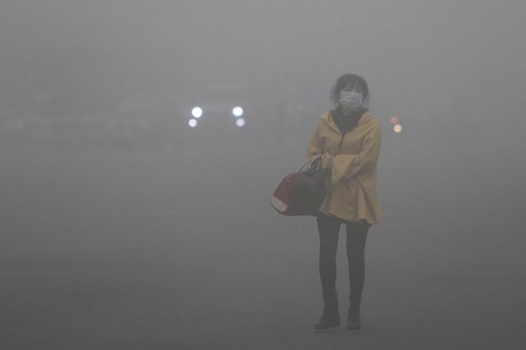 Rusza Warszawski Indeks Powietrza