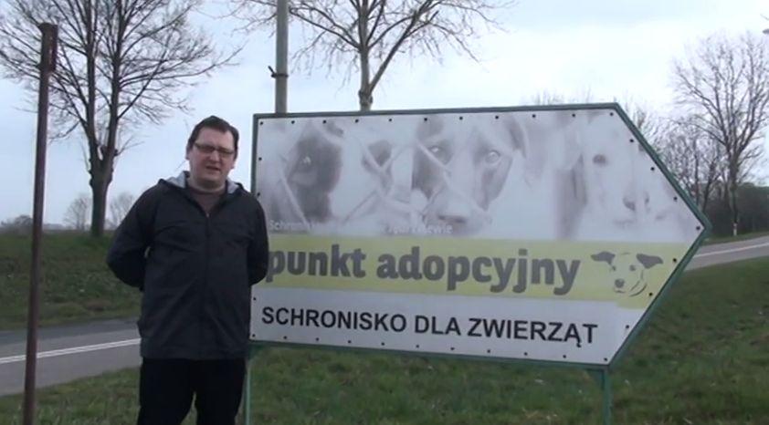 Zobaczcie ile psiaków jest do adopcji – po co kupujecie ??!! Margonin Chodzież Wągrowiec
