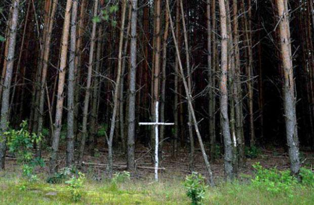 WOLNY CZYN: 72. rocznica Rzezi Wołyńskiej: Apel Polaków z Ukrainy