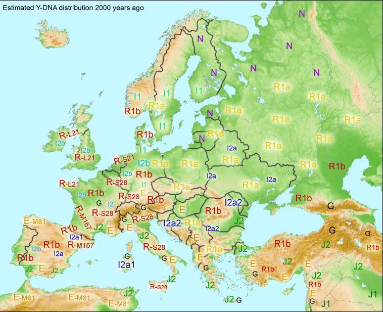 Rozklad Haplogrup