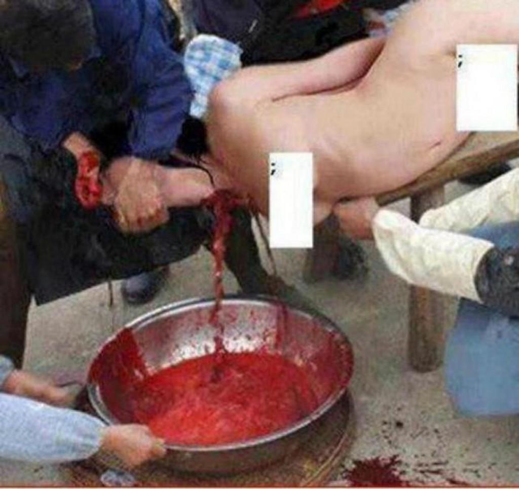 Islamiści po zabiciu kobiety przez poderżnięcie jej gardła i zbierający jej krew do miski, trzymając jej głowę w taki sposób, że dosłownie wysysają jej życie z szyiaaaaaaaaaaaaaaaaaaaaaaaaaaaaaaaaaaaaaaaa.