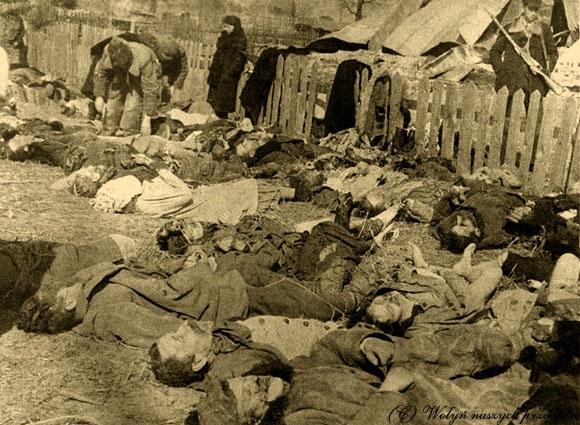 Projekt ustawy 11 lipca Dzień Ludobójstwa dokonanego przez OUN-UPA…-Kukiz15.