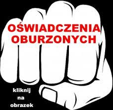 Pierwszy Ogólnopolski Sejmik Antysystemowy – OSA