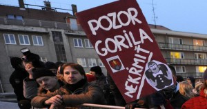 U1K4djy5RaqSaW1Wou_qZA.2560~astn-ci-protestu-Gorila-v-janu-ri-v-roku-2012