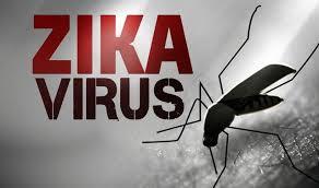 CDC uznaje związek mikrocefalii z wirusem Zika