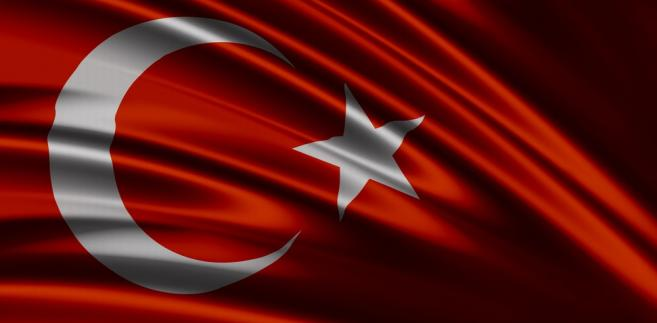 Lewica, gender, pedofilia, Turcja