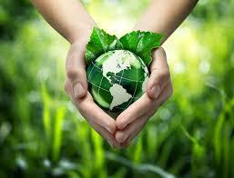 Środowisko naturalne a prawo własności