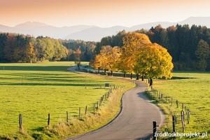 Moja droga – nie moją drogą, czyli jak samorząd chce przywłaszczyć sobie cudzy grunt