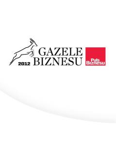 gazele biznesu_duze