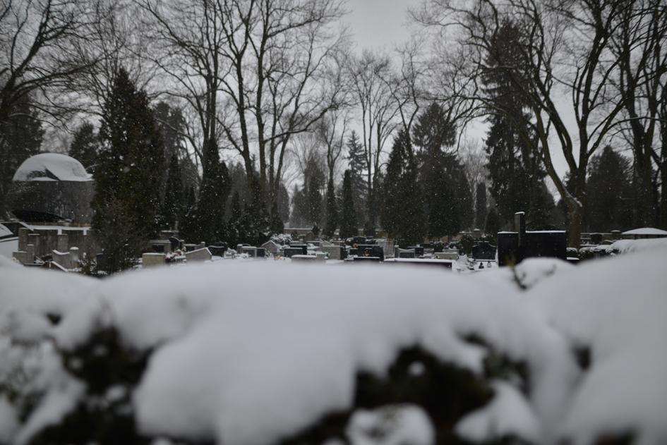Pamięć za śniegiem