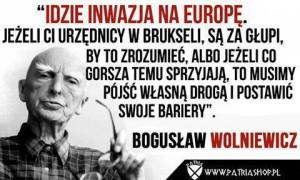 Wolniewicz