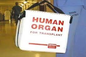Czy to tylko pomyłka w ustawie transplantacyjnej?