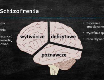 Byłem schizofrenikiem (?) (2000 r.)
