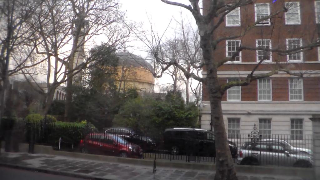 Drzewa bez liści z meczetem w tle