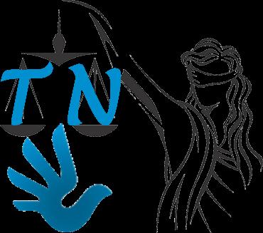 Najwyższy Trybunał Narodowy, Sąd Narodowy i sędziowie pokoju