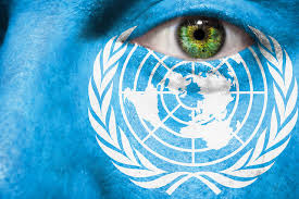 Raport ONZ wzywa do przekształceń w rolnictwie