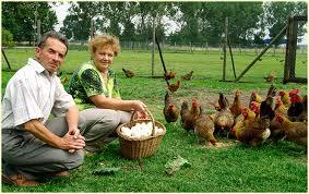 Zalety rolnictwa opartego na małych gospodarstwach