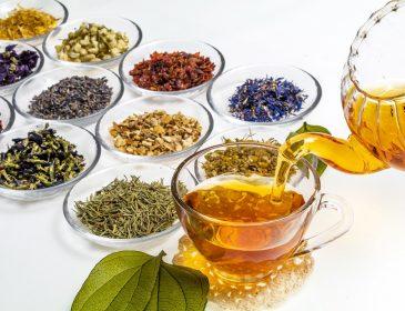 Lecznicze właściwości herbat ziołowych