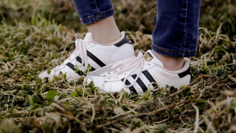 Adidas Superstar – kultowy model obuwia od niemieckiego giganta