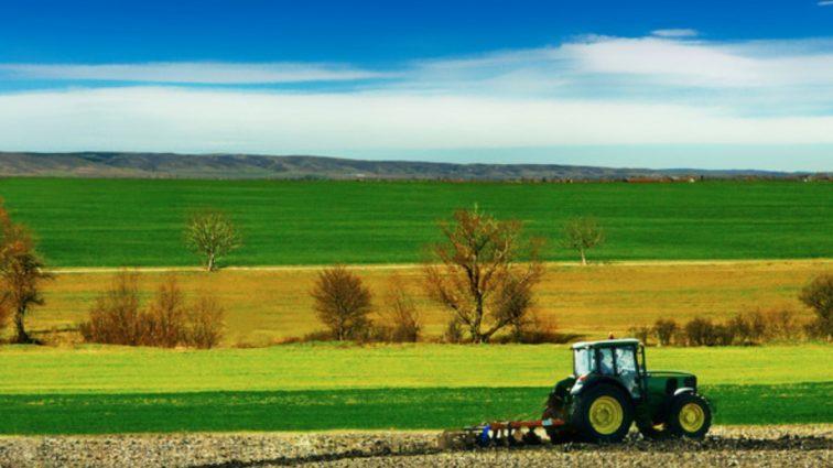 Los polskiego rolnictwa