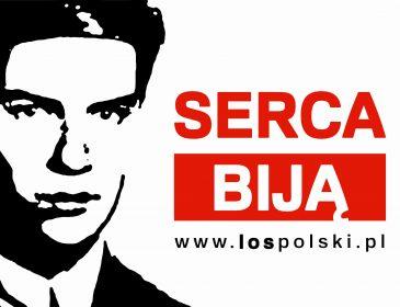 LOS Polski TV