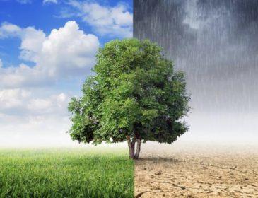 W czyim interesie jest powstrzymywanie zmian klimatycznych? – materiały programowe