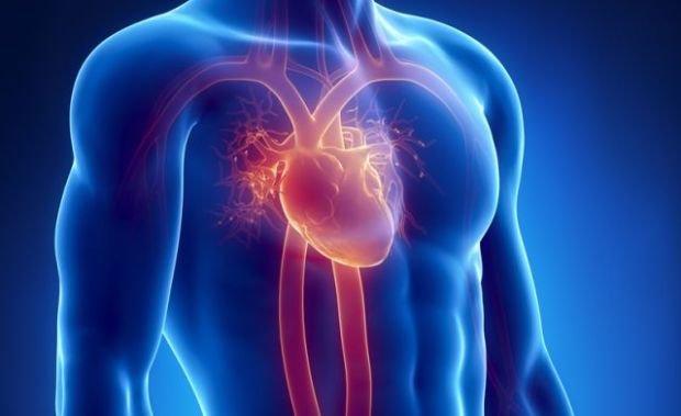 Związek chorób serca i raka z nanobakteriami